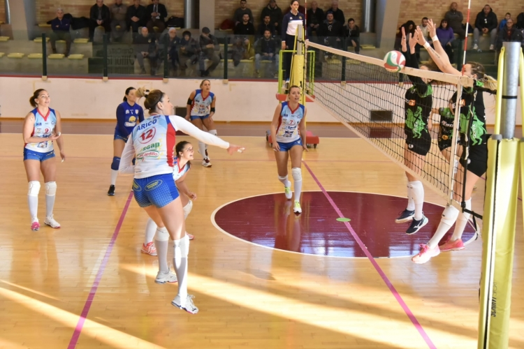 Seal Dalli Cardillo, a Chieti sconfitta della discontinuità.